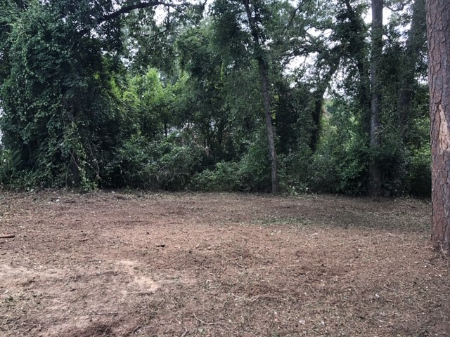 Land Clearing West Columbia SC - After