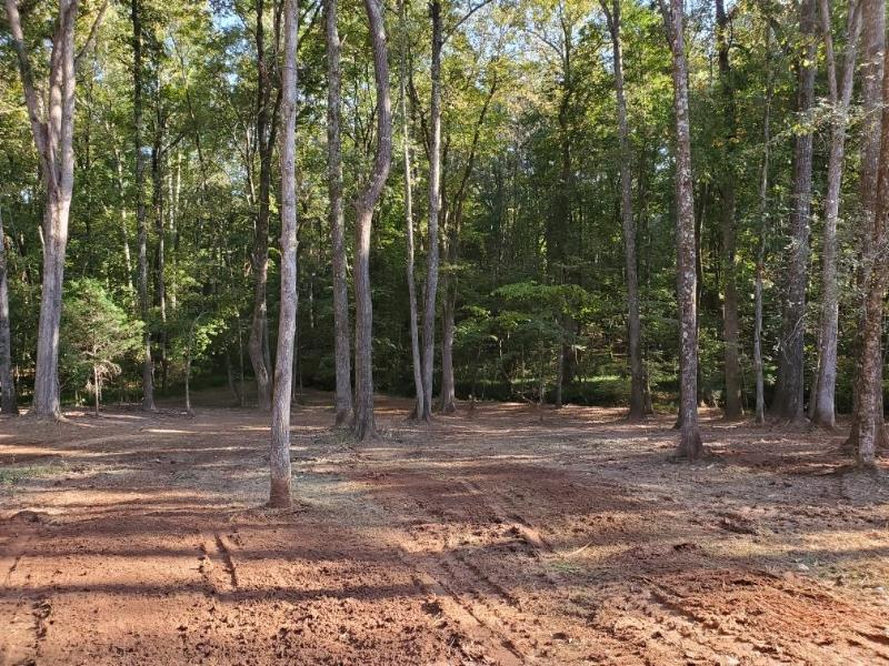 Residential lot in Chester, SC - After
