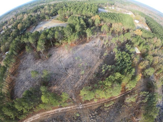 3acre clear cut, Phase 1, Elgin SC -After
